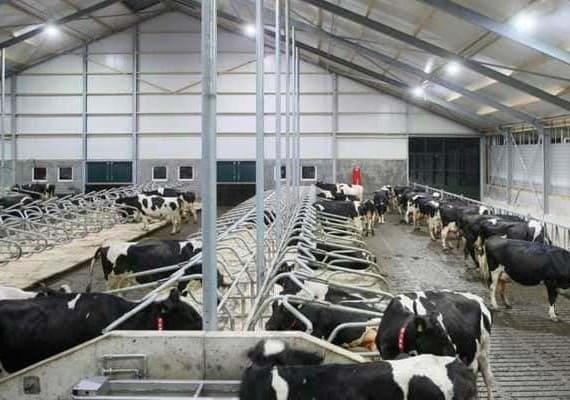 Комплекс строений для животноводства РУТС