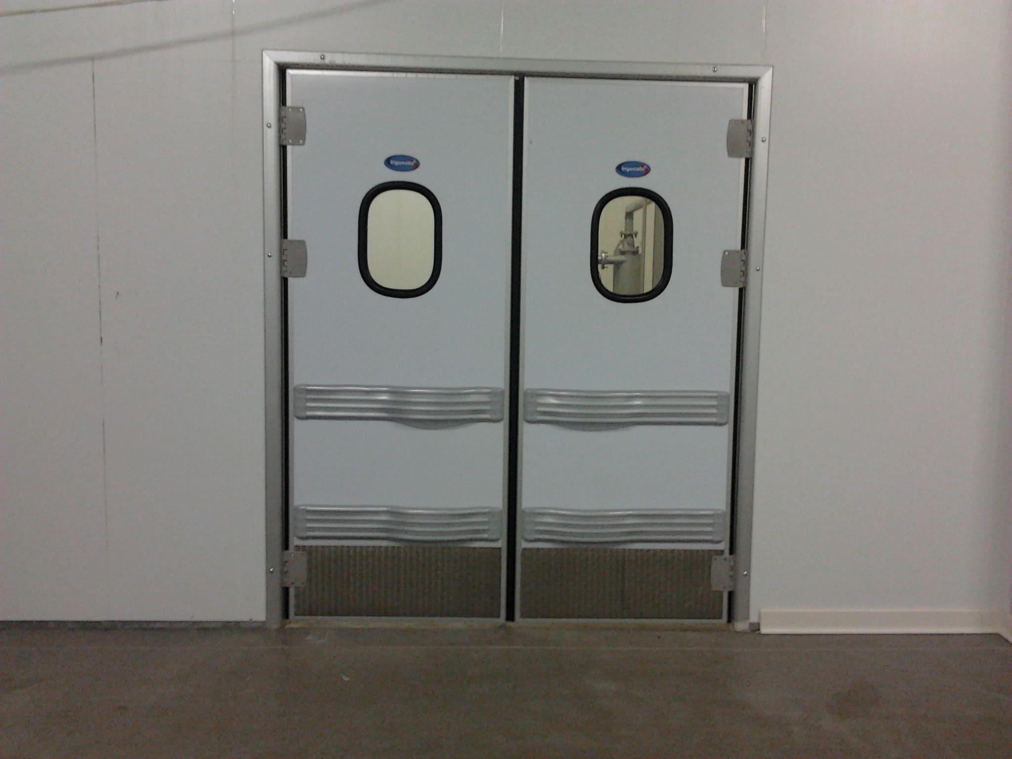 технические маятниковые двери рутс