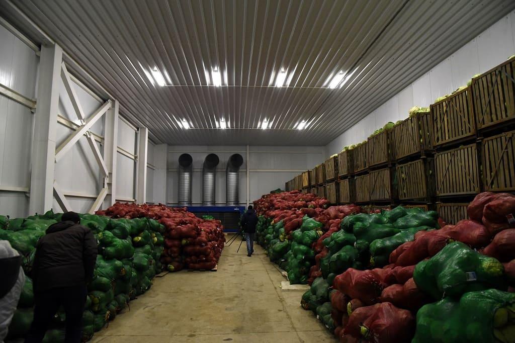 двери для фруктохранилищах