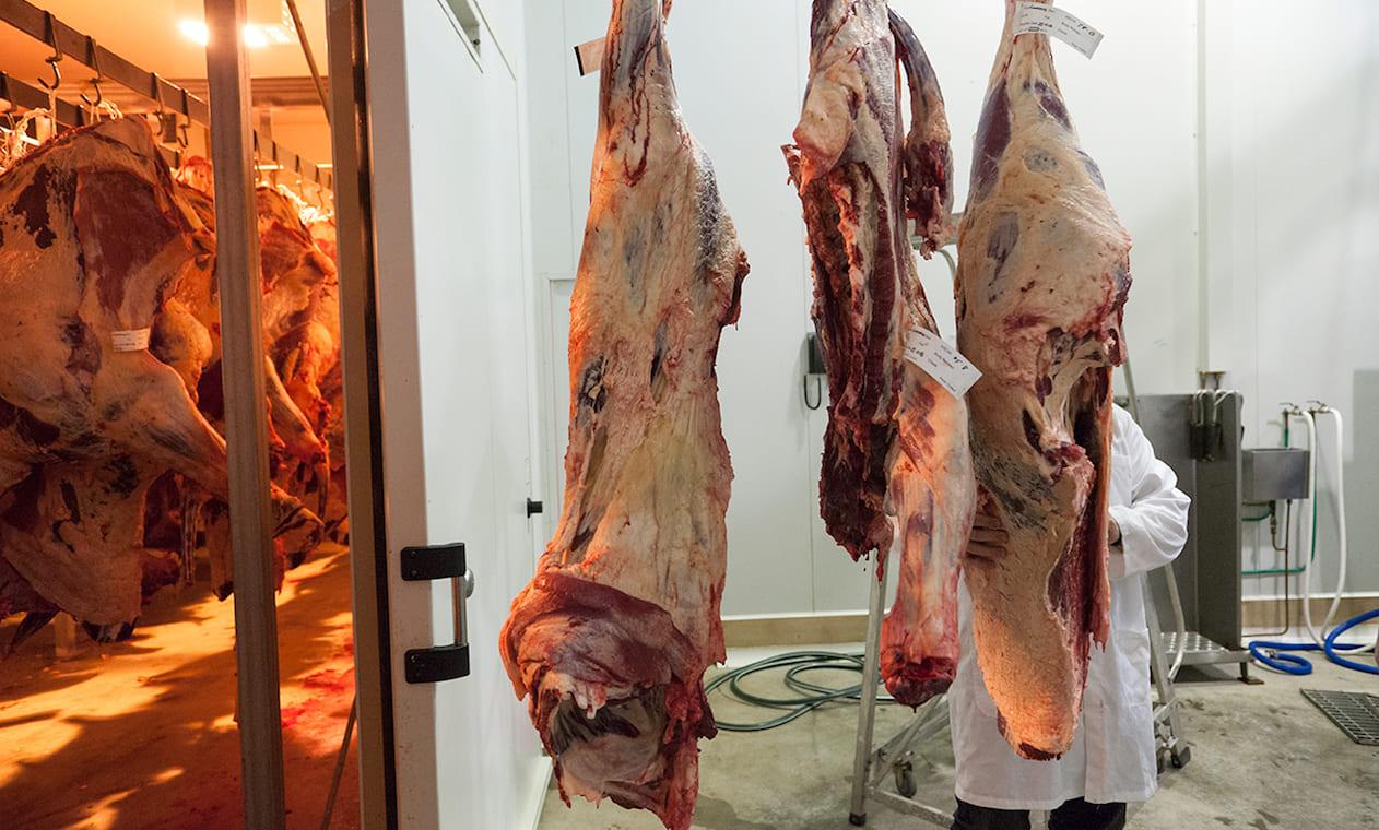 двери для мясокомплекса